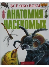 Анатомия насекомых.Все обо всем