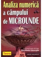 Analiza numerica a campului de microunde