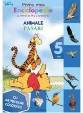 Pasari Prima mea enciclopedie cu Winnie