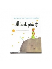 MICUL PRINT. Antoine de Saint-Exupery