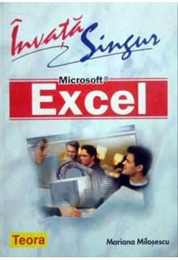 Invata singur Microsoft Excel