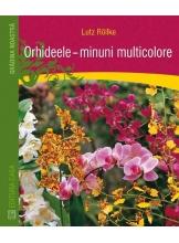 Orhideele - minuni ale naturii