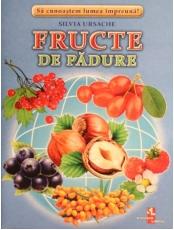 Fructe de padure fise
