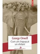 Cum am impuscat un elefant