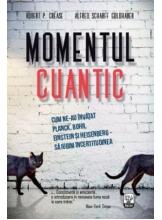 IQ230 Momentul cuantic