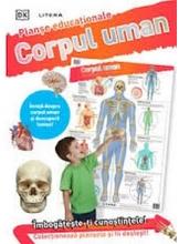 CORPUL UMAN (planse educationale infoliate)