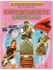 Instrumente muzicale fise