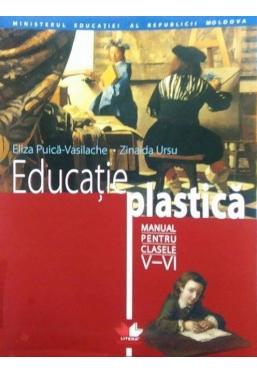 Manual Educatie Plastica cl.V-VI rom