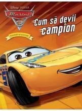 Disney Pixar Masini 3 - Povesti si jocuri - Cum sa devii campion