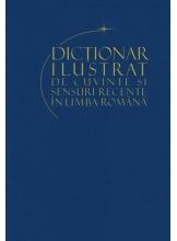 Dictionar ilustrat de cuvinte si sensuri recente in limba romana