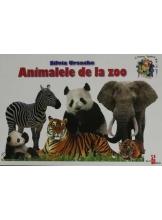 Animalele de la zoo Cunosc lumea pas cu pas